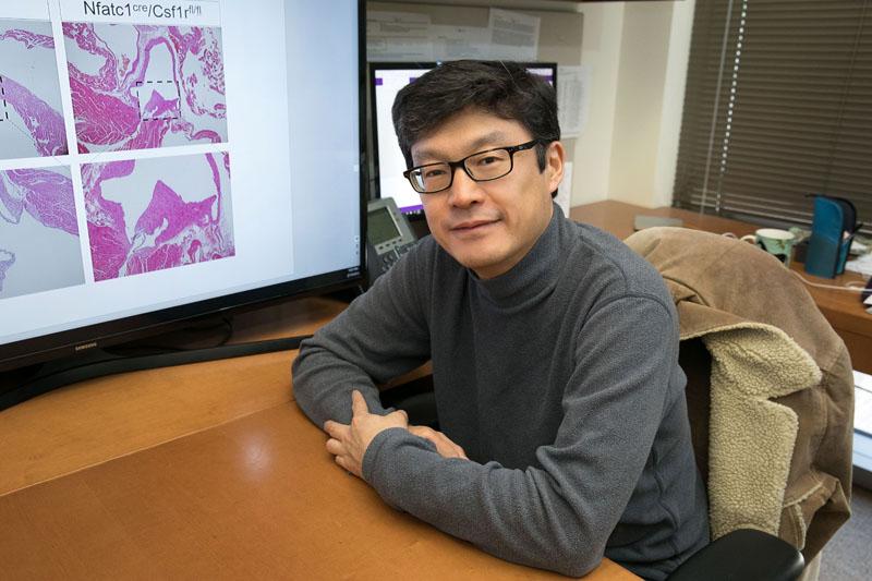 Atsushi Nakano, MD, PhD