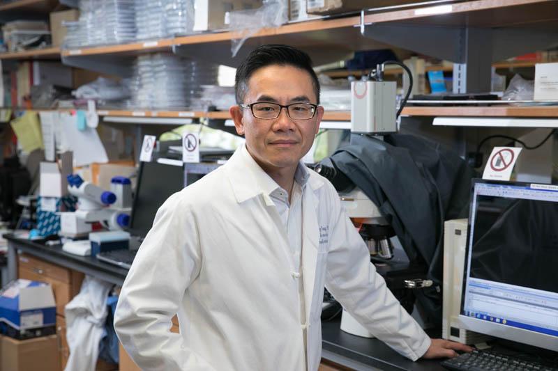 Hsian-Rong Tseng, Ph.D.