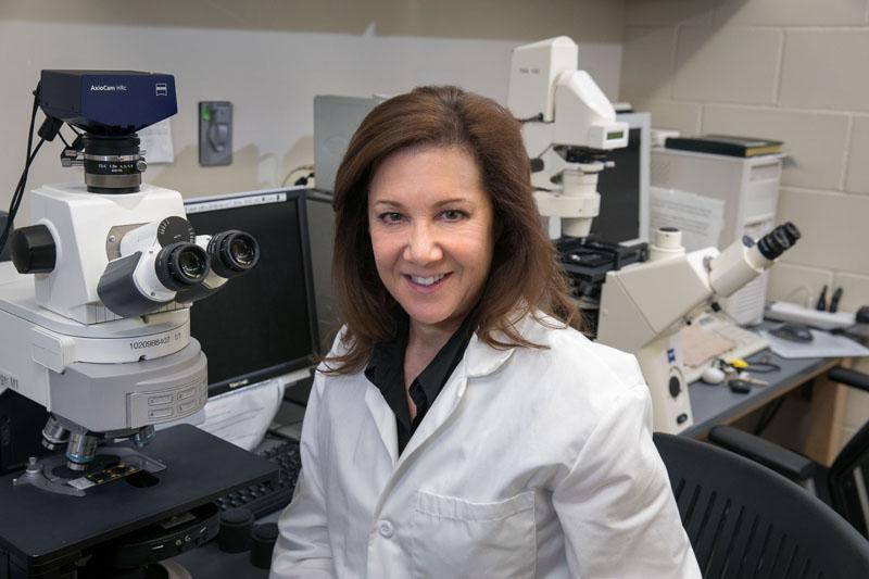 Melissa Spencer, Ph.D.