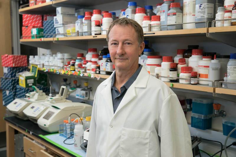 Steven Jacobsen, PhD