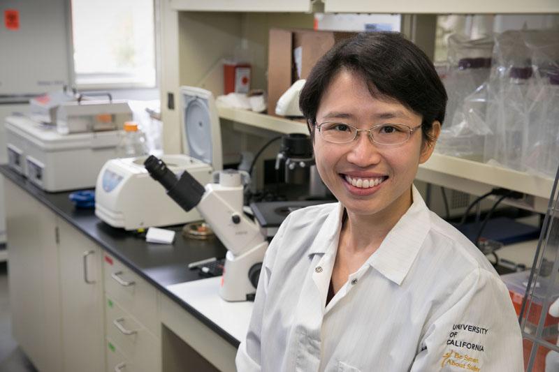Yvonne Chen, Ph.D.