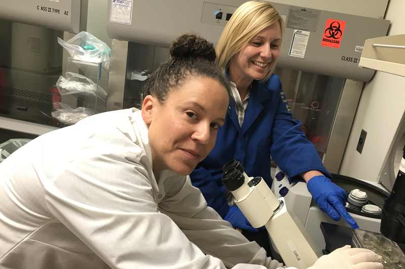 Dr. Joanna Gell (left) and Amander Clark examine germ cell tumor cells in the lab at UCLA.