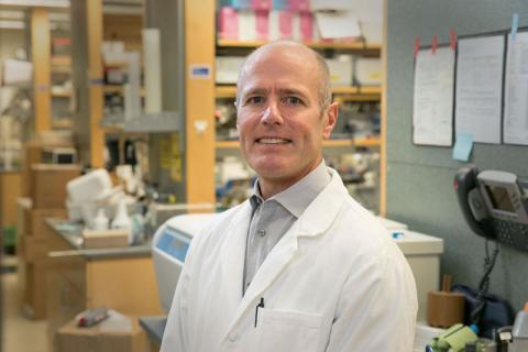 S. Thomas Carmichael, MD, PhD