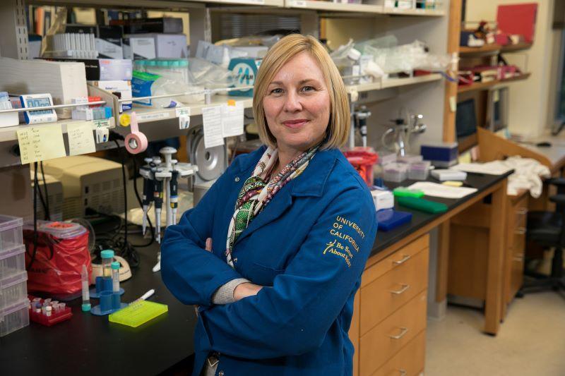 Amander Clark, PhD
