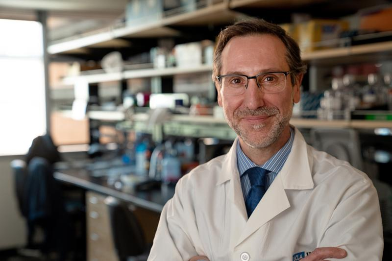 Dr. Antoni Ribas in the lab