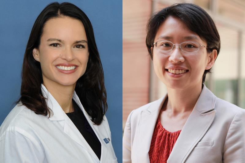 Dr. Larson and Dr. Chen