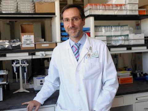 Antoni Ribas, M.D., Ph.D.