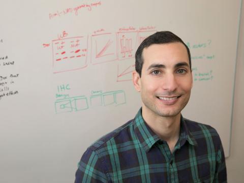 Andrew Goldstein, PhD