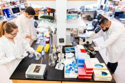 Students working in the lab of Dr. Donald Kohn