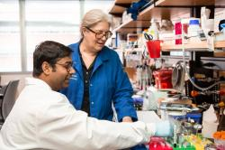 Image of one male and one female researcher in a lab
